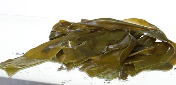 действие водорослей на кожу