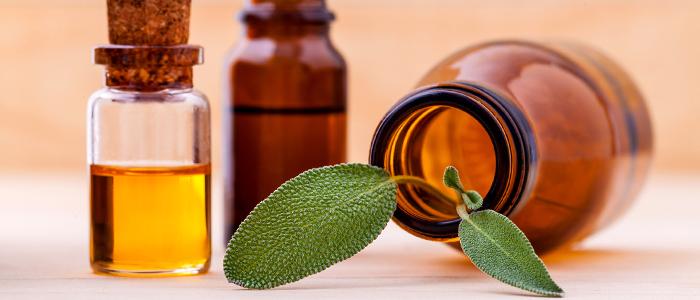 Полезные свойства масла жожоба для лица