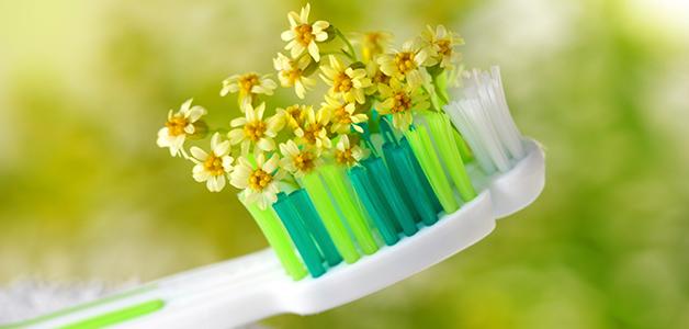 Народные средства при кисте зуба
