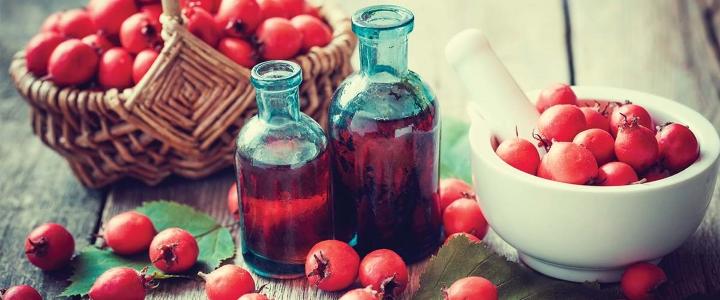 Как пить настойку из боярышника на водке