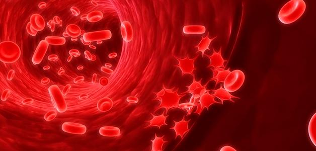 Низкий гемоглобин - причины, симптомы, методы повышения