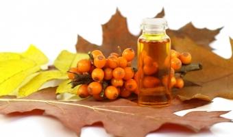 Облепиховое масло – свойства, народные рецепты и способы заготовки