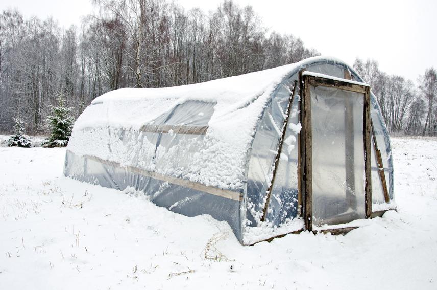 Огород на зиму