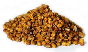 Перга пчелиная – полезные свойства, применение