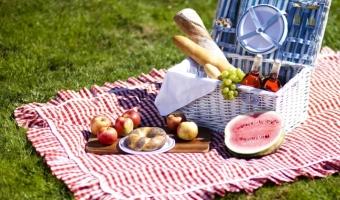 Блюда для пикника – рецепты и полезные советы