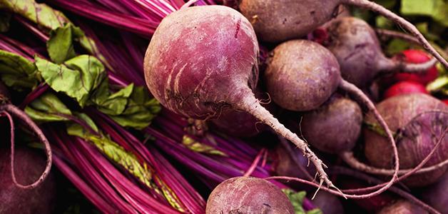 Свекла - польза и вред овоща для организма
