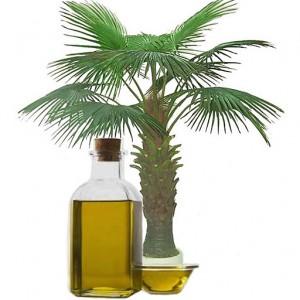 Полезные свойства пальмового масла