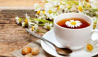 Ромашковый чай – польза, вред и лечебные свойства