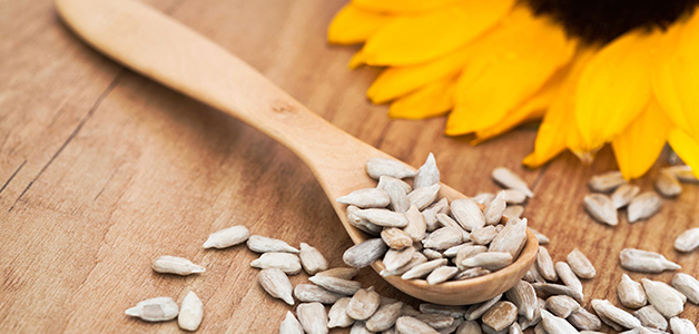 Польза семечек подсолнуха для женщин