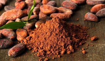 Какао – польза, вред и правила выбора напитка