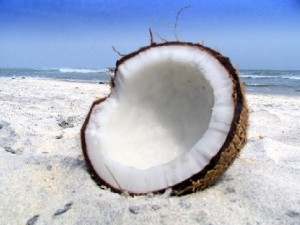 Фотографии кокоса
