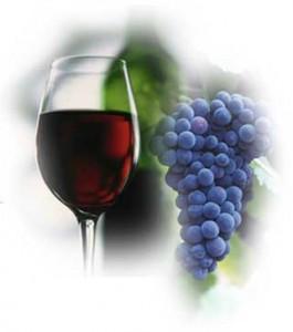 Полезные свойства и ред красного вина
