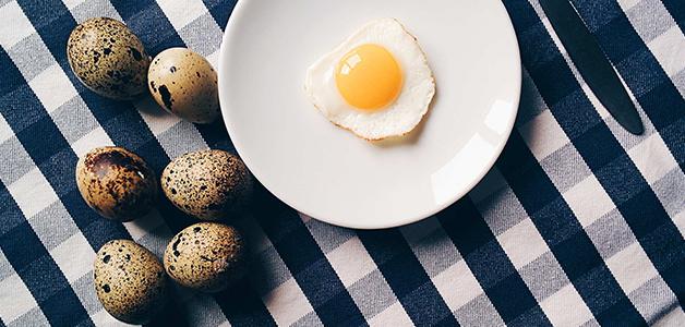 Перепелиные яйца - польза, вред, норма употребления