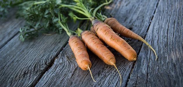 Морковь для лактации