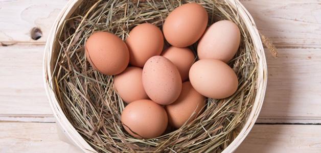 Яйца для лактации