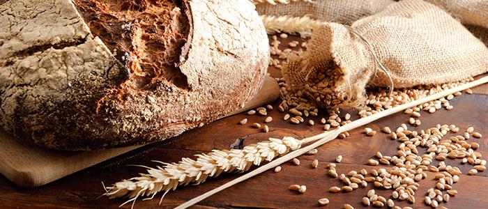 Хлеб для зрения