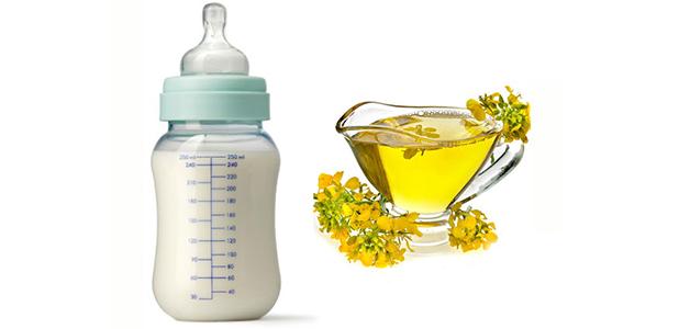 Польза и вред рапсового масла