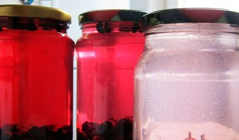 Рецепты компота из жимолости – вкусные морсы в домашних условиях