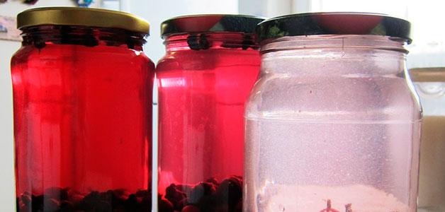 Рецепты компота из жимолости - вкусные морсы в домашних условиях