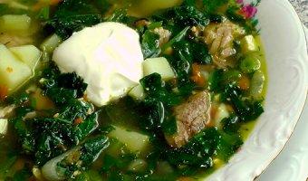 Рецепты борща с щавелем – вкусные и полезные супы