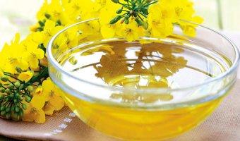 Рыжиковое масло – полезные свойства, вред и противопоказания