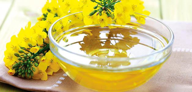 Рыжиковое масло - полезные свойства, вред и противопоказания