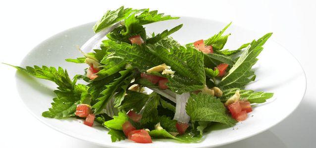 салат из крапивы пошагово
