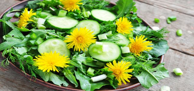 сделать салат из одуванчиков