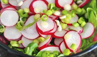 Салат из редиски – 4 простых и вкусных рецепта