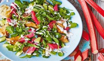 Салат из ревеня – рецепты блюда с витаминами