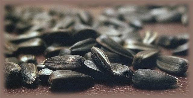 семечки повышают холестерин