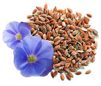 льняное семя от холестерина