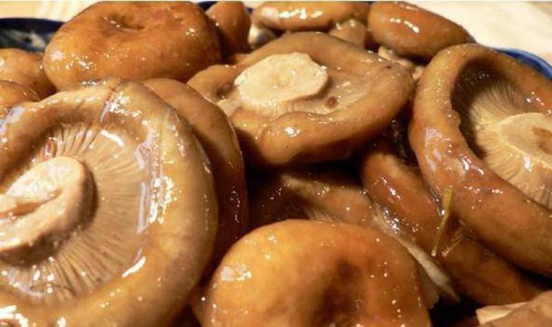 рецепт засолки груздей сырых