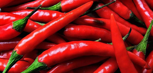 Лучшие сорта перцев для теплиц