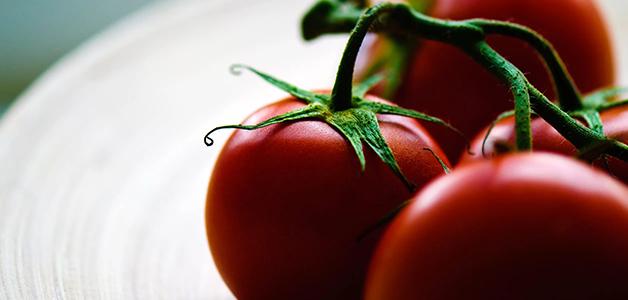Сорта томатов для открытого грунта - подбор по регионам России