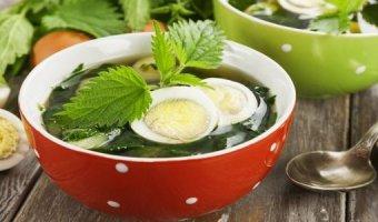 Суп из крапивы – рецепты полезного блюда
