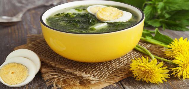 суп из одуванчиков и крапивы
