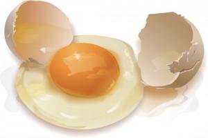 белки яиц