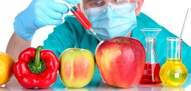Ученые заявили о безопасности ГМО-продуктов