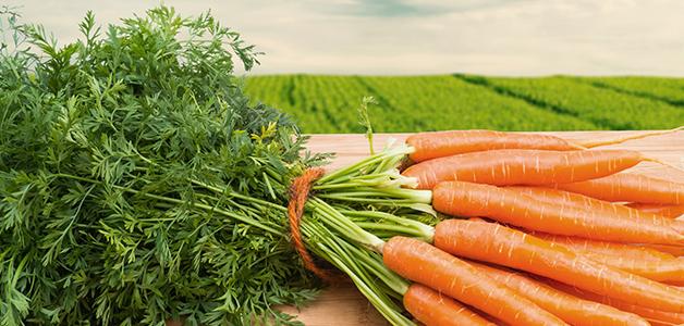 Клетчатка в моркови