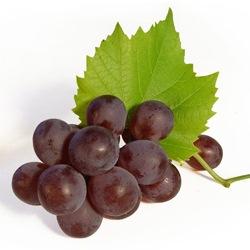 Польза винограда Изабелла
