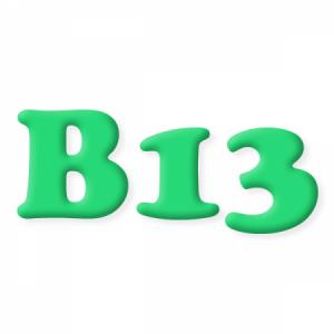 Польза B13