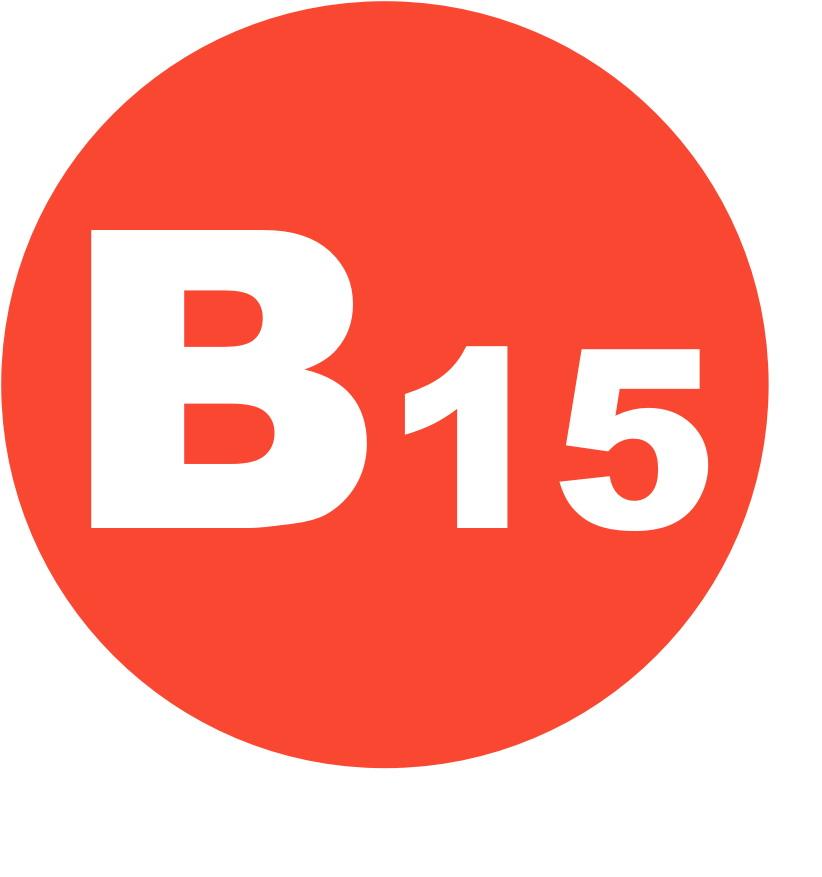Польза витамина B15