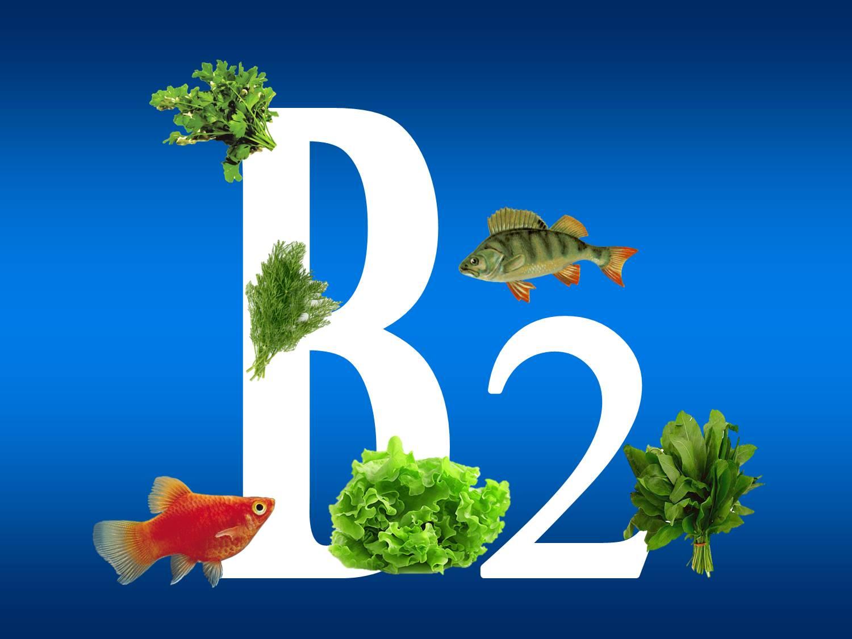 Витамин Б2 польза