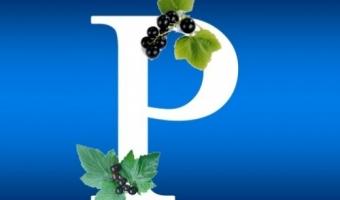 Витамин Р – польза и полезные свойства флавоноидов