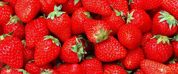 Вредные ягоды для поджелудочной железы